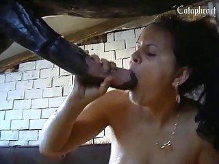 Horse porn Mom win