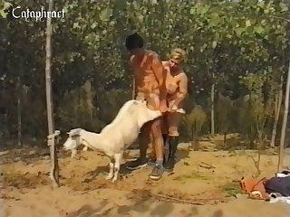 Indian  Amateur farm porn Freak