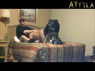 Amateur Dog porn Babe 088