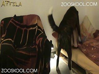 Creampie Swallow Cumpilation Part  zoo xxx